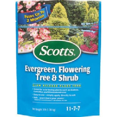 Evergreen Flowering Tree and Shrub 3 lbs. ea. (Case of 6) Best Price