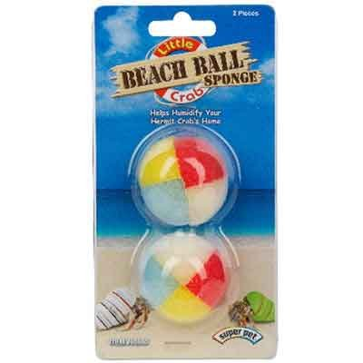 Hermit Crab Beach Ball Sponge Best Price