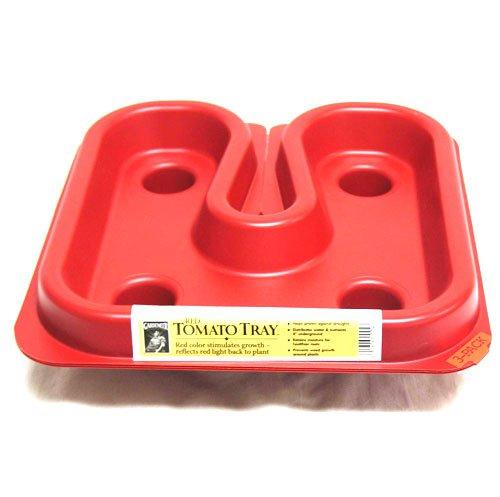 Tomato Tray 3 pack Best Price