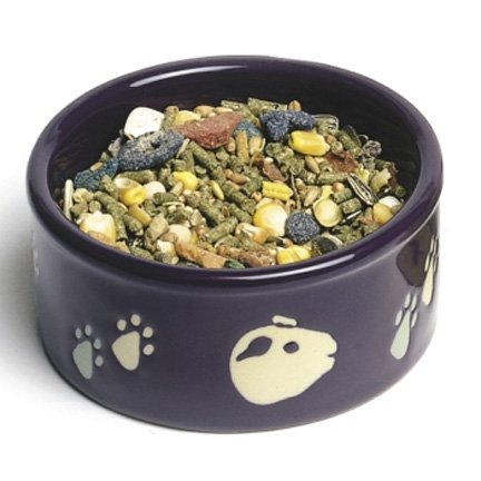 Guinea Pig Pawprint Food Dish - 4.25 in.ES Best Price