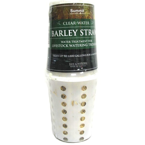 Barley Straw for Troughs 8 oz Best Price