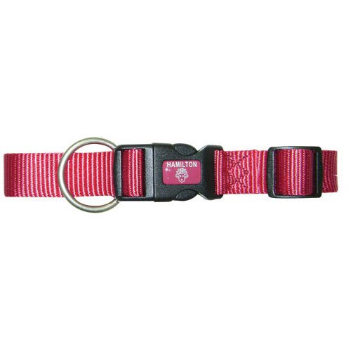 Adjustable Dog Collar / Size (Raspberry 1 in. / 18-26 in.) Best Price