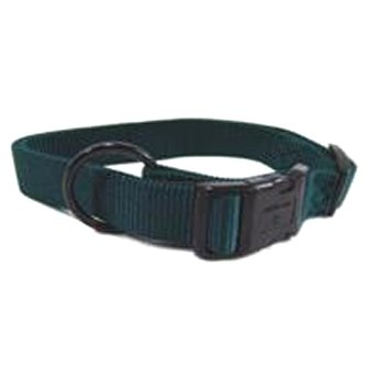 Adjustable 1 In. Dog Collar 18 26 In / Color Hunter Green