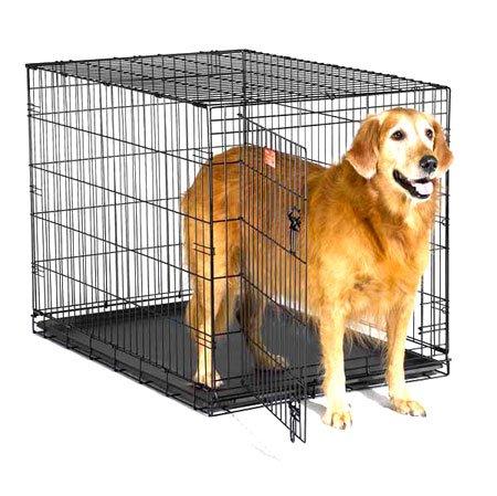 Icrate Pet Home Single Door / Size 42 In.