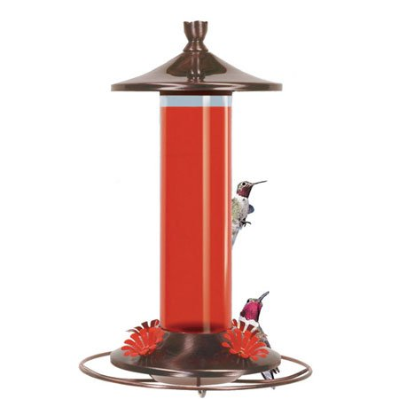 Birdscapes Brushed Metal Hummingbird Feeder 12oz Best Price