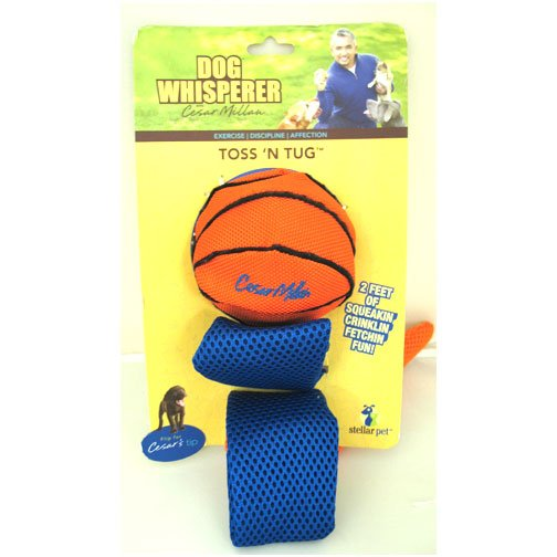 Toss N Tug Dog Toy - 2 ft.