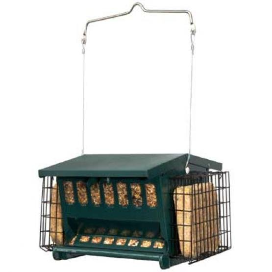 Mini Seeds-N-More Bird Feeder Best Price