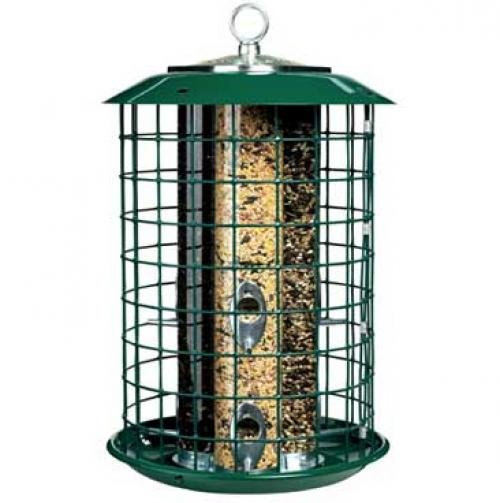 Metal Safe Haven BirdFeeder 6 lbs Best Price