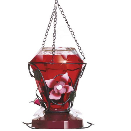 Birdscapes Blossom Hummingbird Feeder Best Price