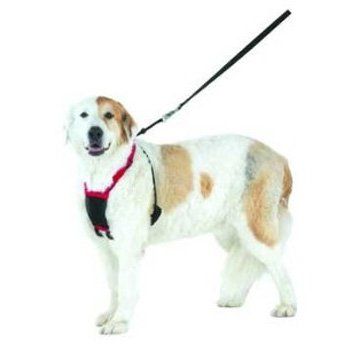 Mesh Anti Pull Dog Harness / Size Large/xl Black