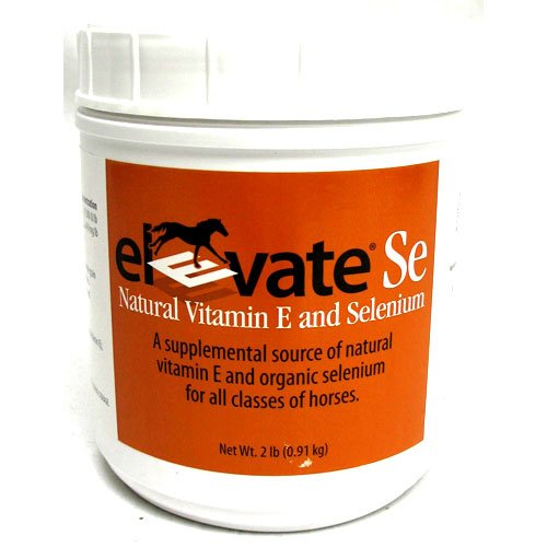 Elevate SE Equine Supplement 2 lbs Best Price