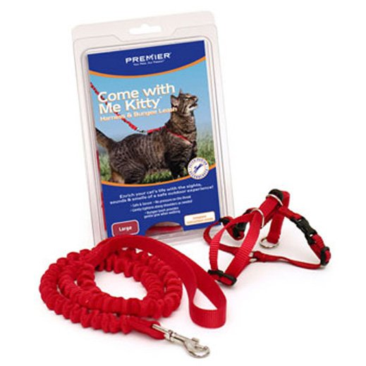 Come With Me Kitty Harness Bungee Leash / Size Large Red