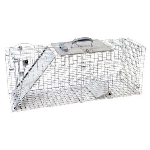 Collapsable Easy Set Cage - 32X10X12 Best Price