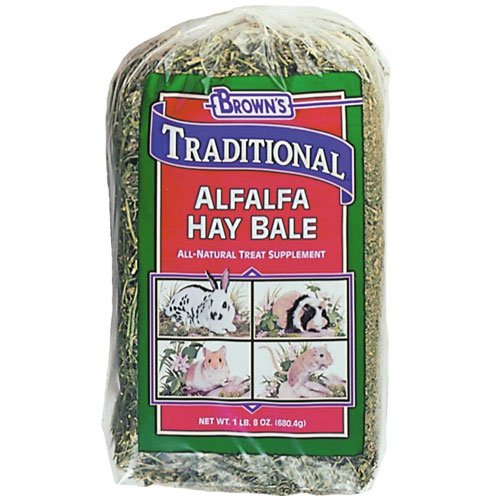 Alfalfa Hay Bale for Small Pets - 24 oz Best Price