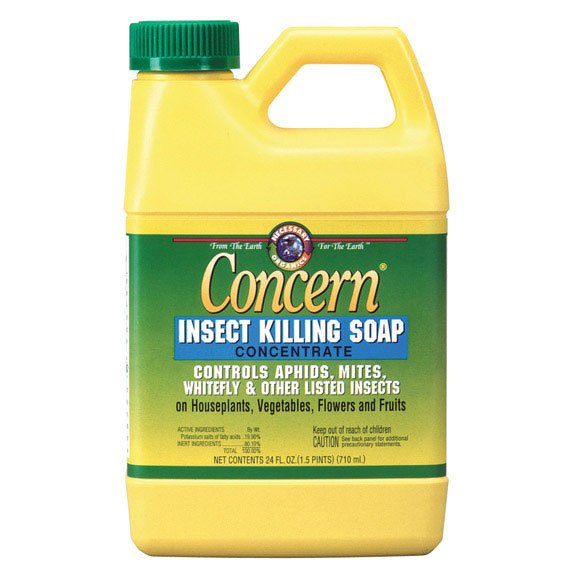 Concern Insect Killing Soap - 24 oz. Conc. Best Price
