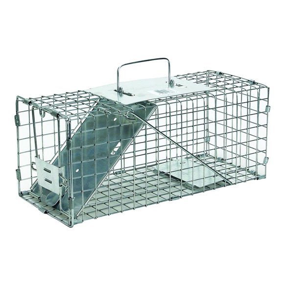 Havahart Pro Squirrel Trap 17x7x7 Best Price