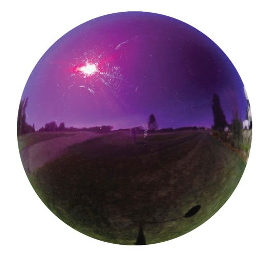 Gazing Globe - Purple / 10 in Best Price