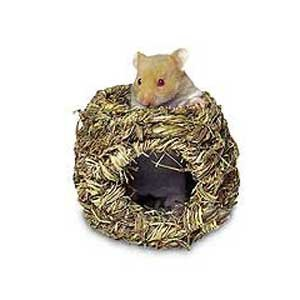 Roll-A-Nest Grassy Nest for Small Animals Best Price
