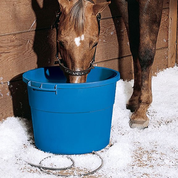 Heated Bucket For Animals 16 Gallon Gregrobert