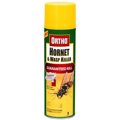 Best Natural Wasp Spray
