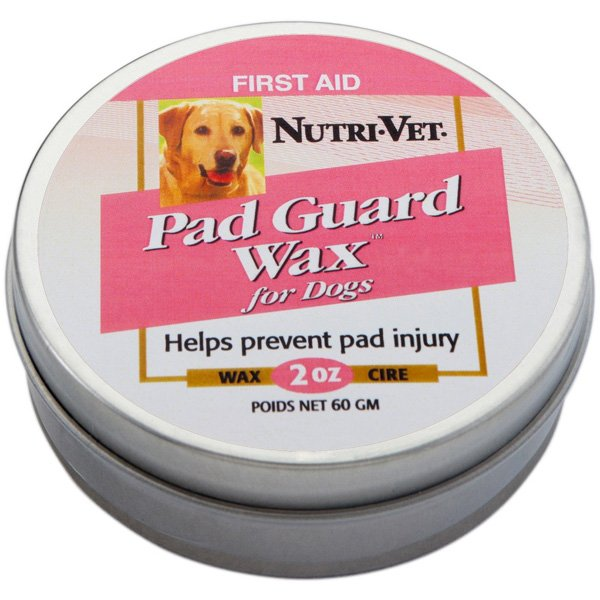 Wet Cracked Dog Paw Pads