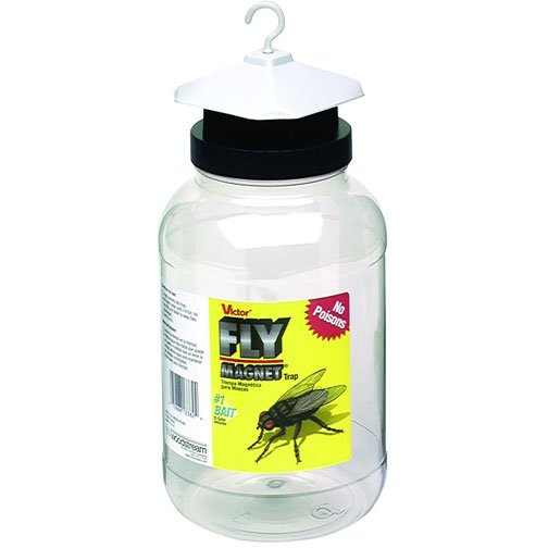 Fly Magnet With Bait (Case of 4) Best Price