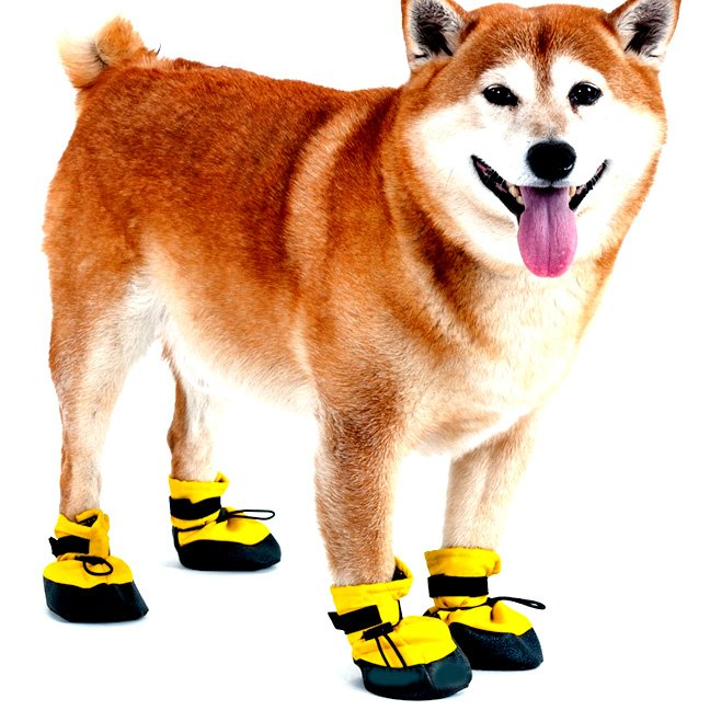 Arctic Winter-proof Dog Boots / Size (Large / Yellow) Best Price