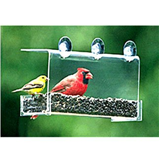 Cardinal Window Feeder Best Price