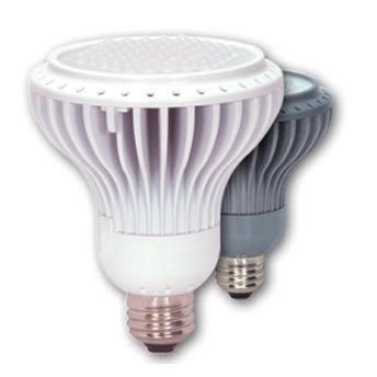 Pro Series Led Flood Bulb - 7 Watt Best Price