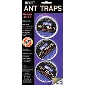 Ant Traps 3 Pack Best Price
