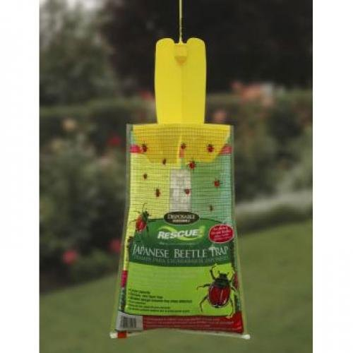 Japanese Beetle Trap  (Case of 12) Best Price