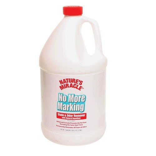 No More Marking Stain and Odor Remover / Size (Gallon) Best Price