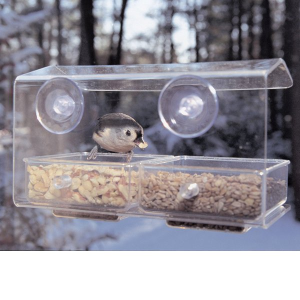 Aspects Buffet Transparent Window Bird Feeder Best Price
