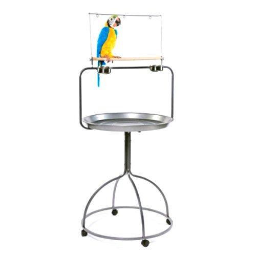Round Parrot Playstand