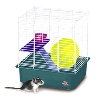 My First Hamster Home - 2 Story Cage for Small Pets Best Price