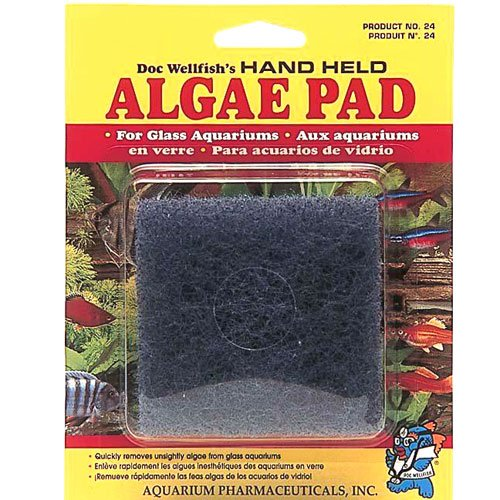 Algae Pad For Glass Aquariums Best Price