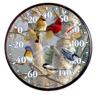 Songbird Indoor Outdoor Thermometer - 12.5 in. Best Price
