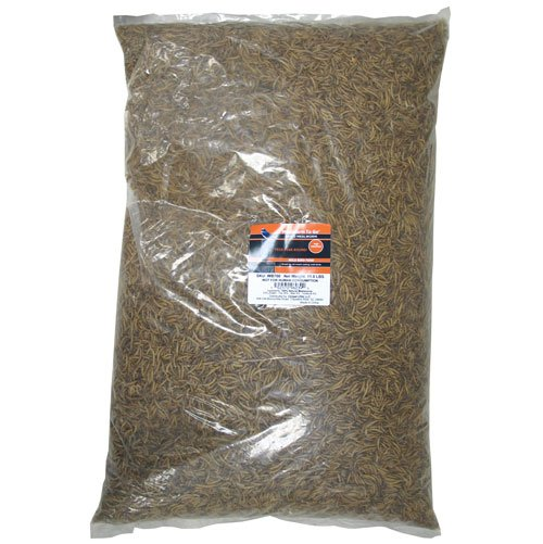 Mealworm To Go for Wild Birds - 11.02 lbs Best Price