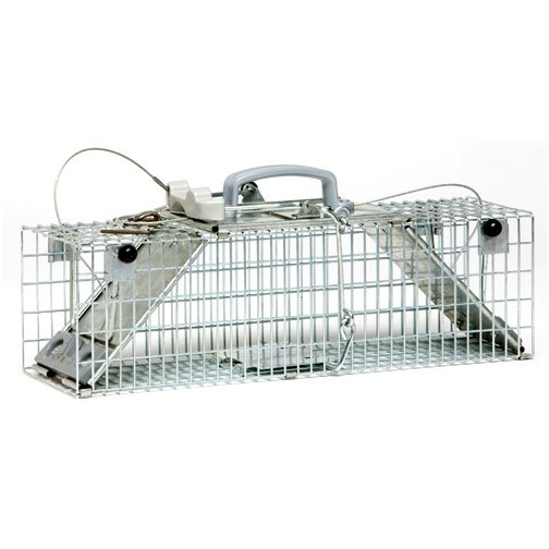 Easy Set 2 Door Trap - 18 x 5 x 5 in. Best Price