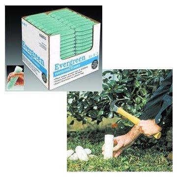 Evergreen Fertilizer Spikes  (Case of 160) Best Price