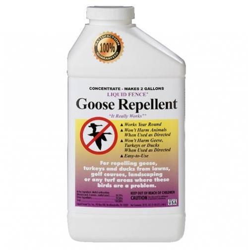Liquid Fence Goose Repellent Concentrate / Size (Quart) Best Price