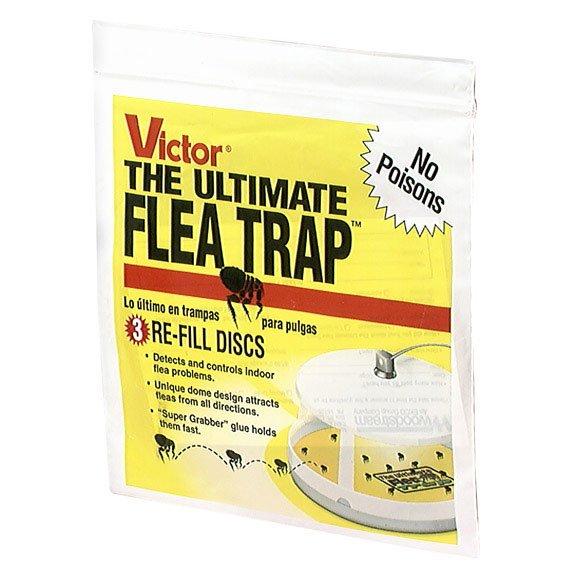Ultimate Flea Trap Refills 3 Pk.
