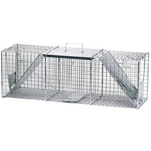 Cage Trap for Groundhogs Best Price