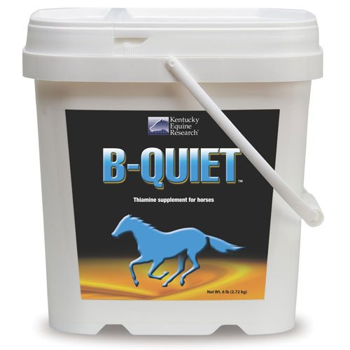 B-quiet Powder for Horses 6 lbs Best Price