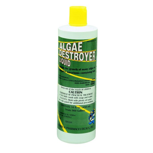 API Algae Destroyer / Size (16 oz.) Best Price