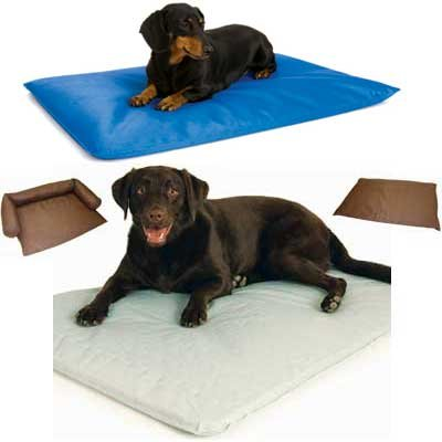 Cool Bed Iii Dog Water Bed Dog Products Gregrobert