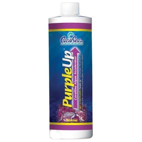 Purple Up Coralline Algae Accel 16 Oz.