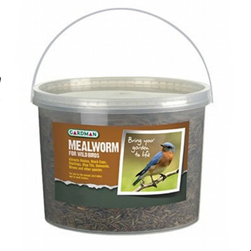 Mealworm Tub for Wild Birds - 28 oz Best Price