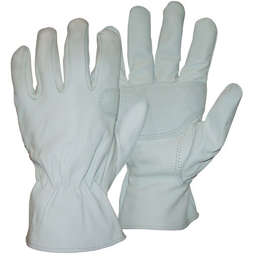 Grain Goatskin Glove Medium (Case of 12) Best Price