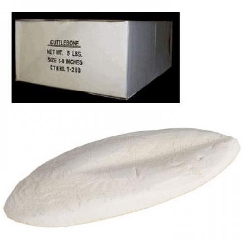 Bulk Cuttlebone for Birds - 5 lbs